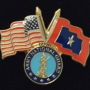 ANG Veterans Flag Pin