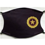 Gold Star Pin Logo face Covering